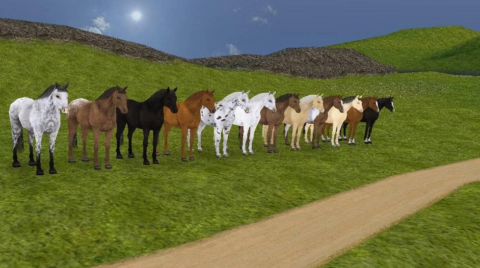 Pferde Spiele.De