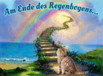 Am Ende des Regenbogens - meine 1. Empfehlung