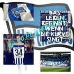 Hertha Fan