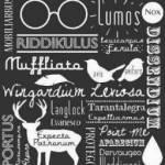 Wie gut kennst du dich mit den Harry Potter Romanen aus?