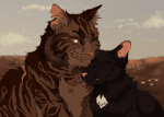 Tigerstern x Rabenpfote