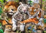 Big wild Cats~BwG