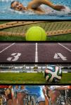 Sport Academy - Lebe deinen Traum!