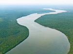 Wie heißt der längste Fluss der Welt?