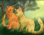 Du liebst eine Katze aus einem anderen Clan...(Graustreif & Silberfluss ❤) was würdest du tun?