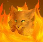 Magst du Warrior Cats?