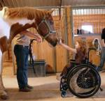 ((big))Programme/Therapien der Schule((ebig)) ((bold))Bauer für einen Tag((ebold)) ((cur))Die Teilnehmer gehen jede Wochen auf die Heartwell Ranch in