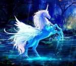 """Das Einhorn nenne ich """"Aquila"""", weil ... Aquila erinnert mich an Wasser und sie ist ja im Wasser ... wunderschön."""