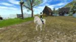 Welche Pferderasse findest du nicht auf dem Pferdemarkt?