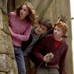 Drittes Jahr: Ron wird vom Grimm(Sirius) in die heulende Hütte gezogen. Du bist der einzige, der es gesehen hat. Was tust du?