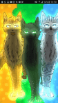 Die Prophezeiung: Es werden 6 Katzen Kommen die die Clans Retten werden vor den Schatten die sich über den Wald legen es wird aber auch 6 Katzen gebe