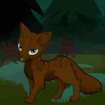 Warrior Cats - Wer ist dein Gefährte aus Schattenkralles Geschichte?