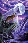 Können Wölfe klettern Ja sie können so gut klettern wie Affen Nein hundeartige tiere können nicht klettern Keine ahnung