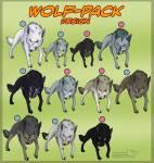 Was für ein Wolf bist du?