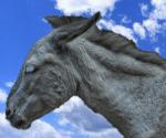 Name: Feueratem Tier: Maulesel Geschlecht: männlich Rang: Krieger Alter: 144 Aussehen: dunkelgraues Fell mit langen Ohren und blitzenden blauen Augen