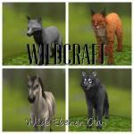 Hallo zusammen! Ich glaube ziemlich viele kennen WildCraft... Naja, hier könnt ihr einen[oder mehrere] Charakter erstellen... Viel Spass!