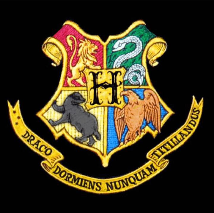 Harry Potter Dein Steckbrief