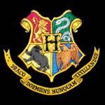 Wer bist du in Harry Potter?