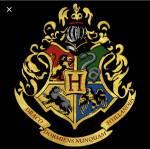 Welcher Junge aus Harry Potter bin ich?