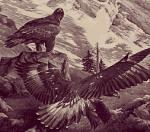 Unter den Schwingen des Adlers