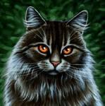 Meine Lieblingkatzen aus Warrior Cats