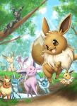 Pokémon - eine eigene Welt