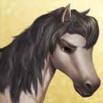 Wie gut kennst du Horse Haven World Adventures?