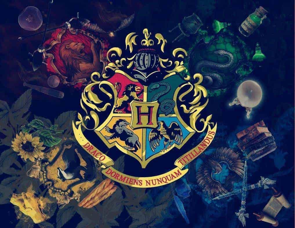 Harry Potter Ein Unerwarteter Lover