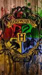 Ich saß in meinem Zimmer und starrte auf das riesige Durcheinander vor mir. Meine Mutter hatte mir gefühlt 1000 Sachen für Hogwarts bereitgelegt. W
