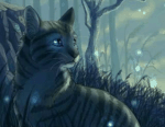 Warrior Cats - Windclan