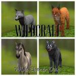 WildCraft Rpg 2.0