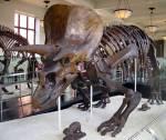 Wer ist der älteste Dinosaurier aus Jurassic World Evolution?