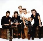 One Direction Fantest