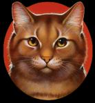 Warrior Cats RPG - Erfunden -
