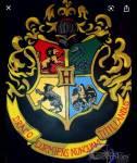 Gryffindor, Hufflepuff, Ravenclaw oder Slytherin?