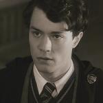 Wer ist dein Hogwarts Lover?