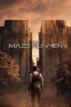 Maze Runner RPG