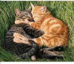 ((maroon))((bold))((unli))((big))Beziehungen((ebig))((eunli))((ebold))((emaroon)) Katze 1 ❤ Katze 2 Katze 1 liebt Katze 2 Katze 1💖Katze 2 Katze 1