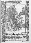 Was weißt du über die Literatur im Barock?