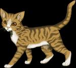Warrior Cats - DER Namensgenerator