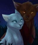 Welche Katze aus Warrior Cats bist du?