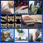 Der Warrior Cats Schreibwettbewerb von Silbersturm