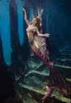 Dein Name als Meerjungfrau