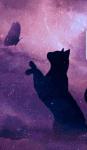 Kennst du die Namen von Warrior Cats?