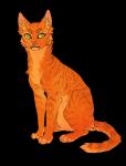 Warrior Cats allgemeine Fragen zur ersten Staffel!