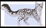 Der ultimative Warrior Cats Test