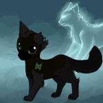 Meine Katzenbilder aus Warrior Cats
