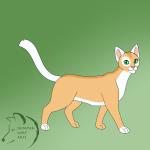 Meine selbstgemachte Warrior Cats Katzen!