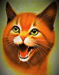 Was weißt du über Warrior Cats?