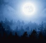 Schöne Nachthintergründe
